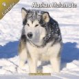 Alaskan Malamute Assistance League Logo